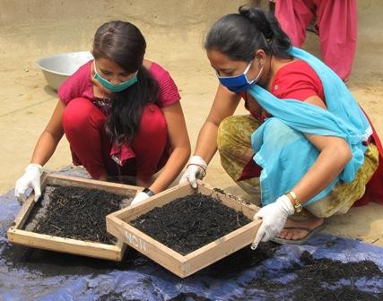 Women empowered to fight climate change while raising forests and finances in Nepal